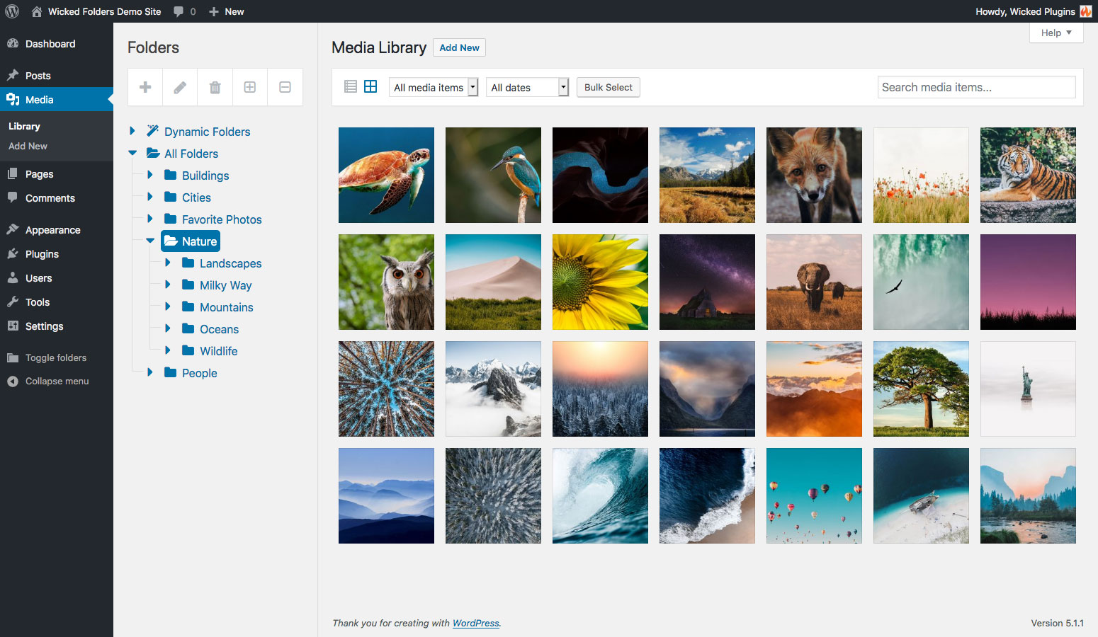 Screenshot of WordPress media library with folders